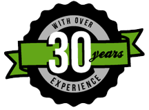 30 years of experience pin
