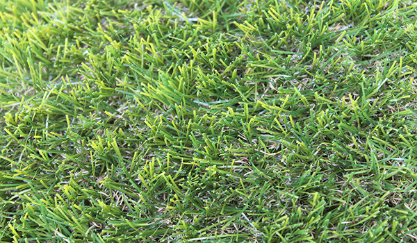 Artificial Grass - Extra Real Turf 4