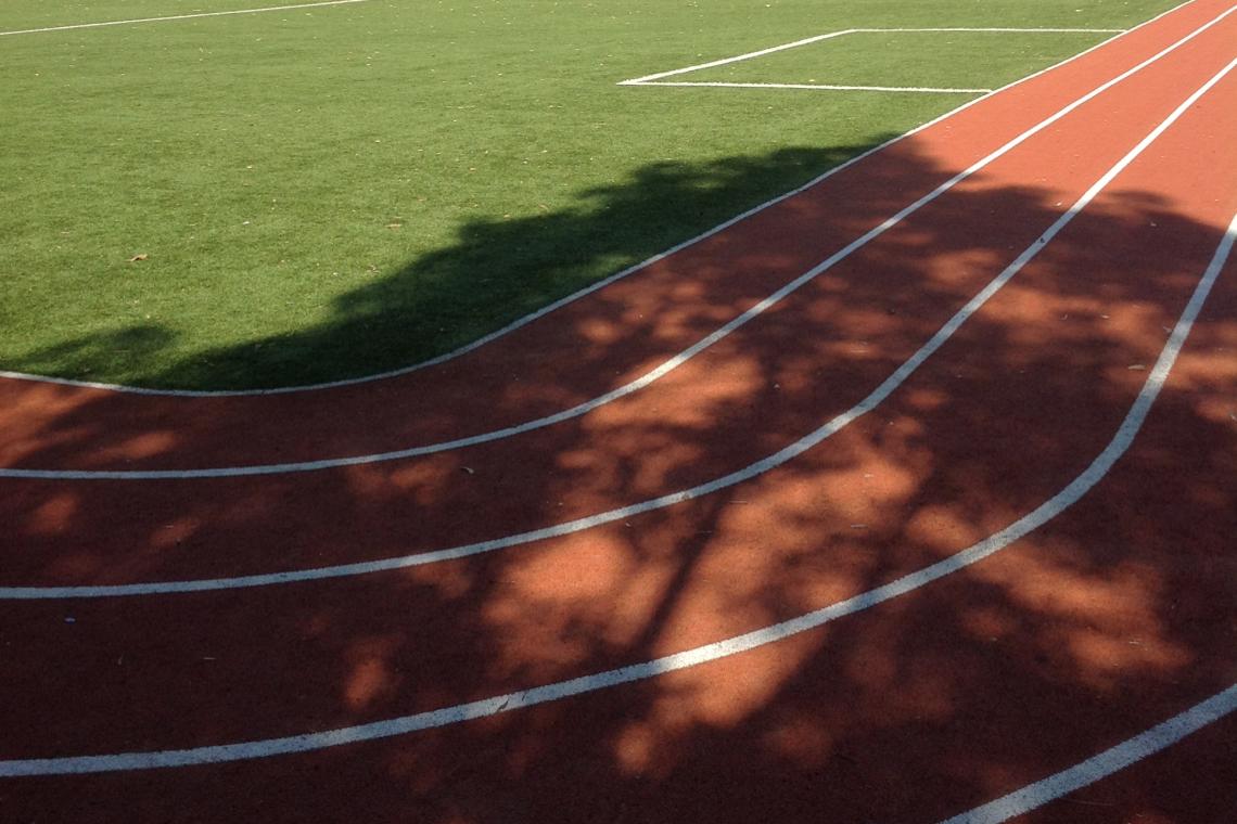 Artificial Grass - Running Track 2