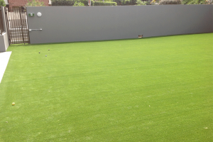 Artificial Grass - Bowling Green