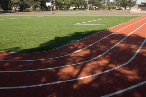 Artificial Grass - Running Track
